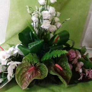 piante_fiori_0423