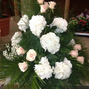 piante_fiori_0655